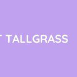 How To Cut Tall grass?